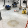 Painted Floor Removal